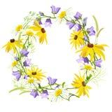 Corona dei wildflowers di estate isolati illustrazione vettoriale