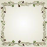 Corona del confine di Ilustacija di oliva, vettore Immagini Stock