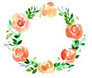 Corona del fiore Immagini Stock Libere da Diritti