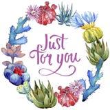 Corona del fiore del cactus del Wildflower in uno stile dell'acquerello Immagini Stock Libere da Diritti