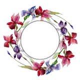 Corona del fiore dell'iride del Wildflower in uno stile dell'acquerello Fotografia Stock Libera da Diritti