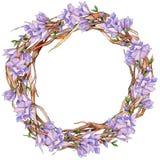 Corona del fiore della magnolia del Wildflower in uno stile dell'acquerello Immagini Stock Libere da Diritti