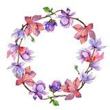 Corona del fiore della magnolia del Wildflower in uno stile dell'acquerello Fotografia Stock