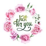 Corona del fiore di rosa del tè rosa del Wildflower in uno stile dell'acquerello Fotografia Stock