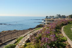 Corona Del Mar 5 Royalty Free Stock Photos