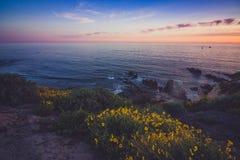 Corona Del Mar Super Bloom Arkivbilder