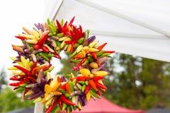 Corona del peperoncino che appende ad un mercato del ` s dell'agricoltore Immagine Stock