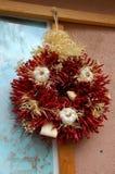 Corona del peperoncino rosso fotografia stock libera da diritti