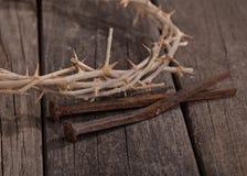 Corona del primer de las espinas imagen de archivo libre de regalías