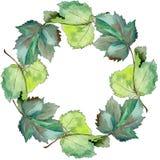 Corona del ribes delle foglie in uno stile dell'acquerello Fotografia Stock