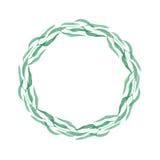 Corona dell'isolato delle erbe su fondo bianco Immagine Stock