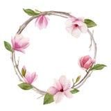 Corona della magnolia dell'acquerello su fondo bianco Greeti di giorno della donna Fotografia Stock