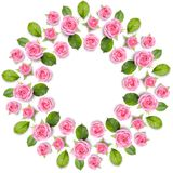 Corona della struttura di Rond fatta delle rose rosa isolate su backgroun bianco fotografie stock libere da diritti