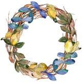 Corona delle foglie dell'acacia in uno stile dell'acquerello Fotografia Stock Libera da Diritti