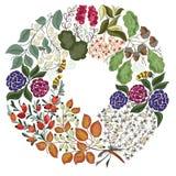 Corona di Autumn Flowers con le api Immagine Stock Libera da Diritti