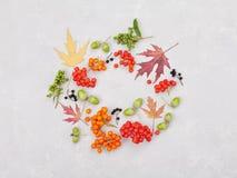 Corona di autunno dalle foglie, dalla sorba, dalle ghiande, dai fiori e dalla bacca su fondo grigio da sopra stile piano di dispo Immagine Stock Libera da Diritti