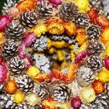 Corona di Natale con le pigne ed i fiori Immagini Stock Libere da Diritti