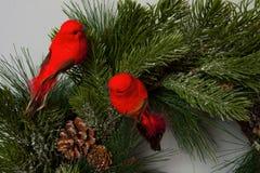 Corona di Natale del dettaglio con gli uccelli rossi Fotografie Stock