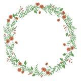 Corona di vettore dei fiori e delle erbe del giardino illustrazione di stock