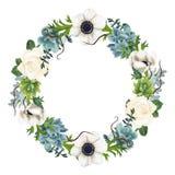Corona dipinta a mano degli anemoni e dei succulenti dell'acquerello Immagini Stock