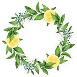 Corona dipinta a mano dei limoni dell'acquerello Fotografie Stock Libere da Diritti