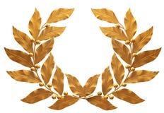 Corona dorata Fotografie Stock Libere da Diritti