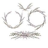 Corona e scenette del purulento-salice dell'acquerello illustrazione di stock