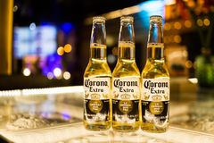 Corona Extra öl Arkivbild