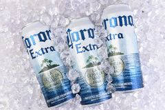 Corona Extra beer cans in ice. IRVINE, CALIFORNIA - MARCH 29, 2018: Corona Extra beer king cans in ice. Corona is the most popular import in the USA stock image