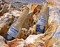 Corona Extra Empty, Dirty Old Beer Bottles Stock Photos