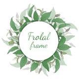 Corona floreale con le foglie verdi Fotografia Stock