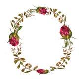 Corona floreale dell'acquerello illustrazione di stock