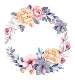 Corona floreale di inverno con i rami, piante di cotone, fiori Fotografia Stock Libera da Diritti
