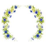 Corona luminosa del fiore dell'acquerello bella per la decorazione Immagini Stock