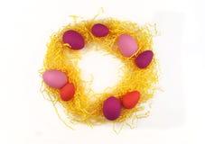 Corona luminosa di Pasqua delle uova, della decorazione di Pasqua e dei fiori Fotografie Stock Libere da Diritti