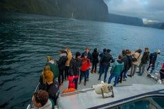 Corona non identificata della gente che enoying il bello paesaggio del ghiacciaio dell'alta montagna a Milford Sound con un bello Fotografia Stock