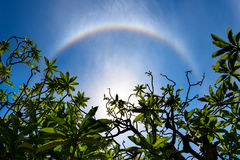 Corona ring of sun. Corona on blue sky, ring around the sun with ring shape Stock Image