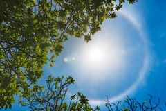 Corona ring of sun. Corona on blue sky, ring around the sun with ring shape royalty free stock photography
