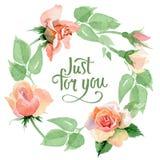 Corona rosa del fiore del Wildflower in uno stile dell'acquerello Immagini Stock Libere da Diritti