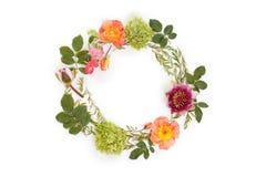 Corona rotonda floreale della corona con i fiori e le foglie fotografia stock