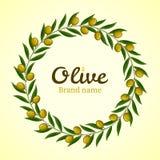 Corona verde dei rami di ulivo Fotografie Stock