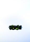 Corona verde del agua. Fotografía de archivo