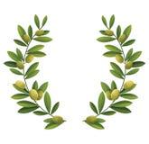 Corona verde oliva illustrazione vettoriale