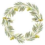 Corona verde oliva dell'acquerello dell'alloro illustrazione di stock
