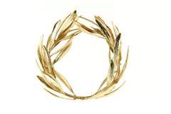 Corona verde oliva dell'oro Fotografia Stock