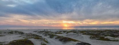 Coronado Beach in San Diego by the Historic Hotel del Coronado, at sunset with unique beach sand dunes, panorama view of the Pacif. Ic Ocean, silhouettes of stock images