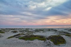 Coronado Beach in San Diego by the Historic Hotel del Coronado, at sunset with unique beach sand dunes, panorama view of the Pacif. Ic Ocean, silhouettes of stock photography