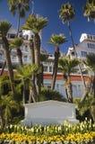 coronado Del Hotel Obraz Royalty Free