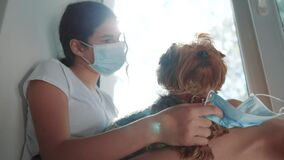 Coronavirus pandemic concept. little teenage girl puts a medical mask on a dog. self-isolation concept virus covid 19
