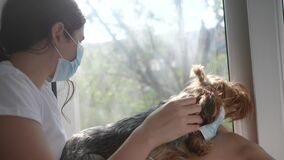 Coronavirus pandemic concept. little teenage girl puts medical mask on a dog. self-isolation virus concept covid 19
